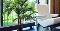 comprar plantas para interior artificiales